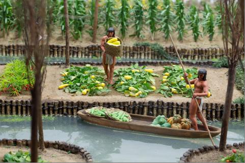 Aztecs: Gardens in the lake | Te Papa's Blog