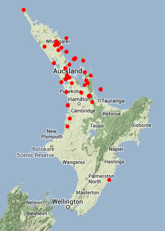 Where Is Wanganui In New Zealand Map.A Native Species Re Recorded For Wellington Te Papa S Blog