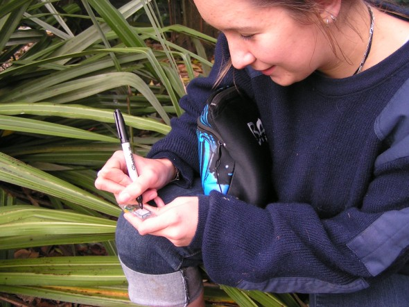 Te Papa Intern Mathilde Meheut labels GPS loggers ready for deployment on seabirds foraging offshore New Zealand. Photo: Susan Waugh © Te Papa