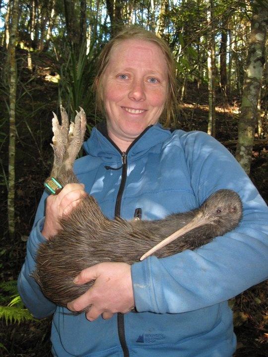 Kiwi Adult 90