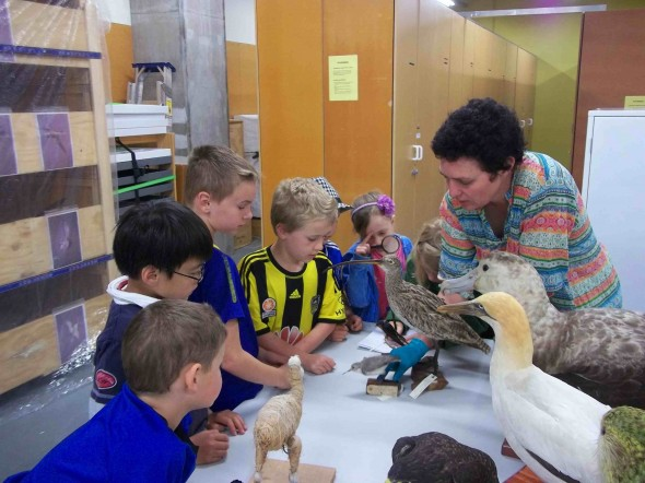 Curator Susan Waugh tells the students from Khandallah School Room 5 all about sea birds. Photographer: Scott Ogilvie © Te Papa