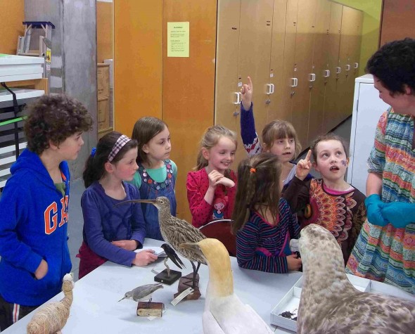 Students ask Susan Waugh all about birds. Photographer: Scott Ogilvie © Te Papa