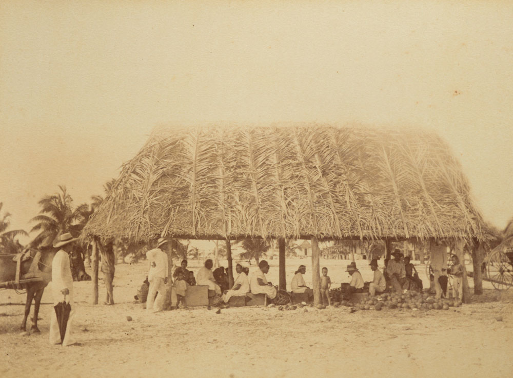 Locals sit under structure with a roof made from palm tree leaves
