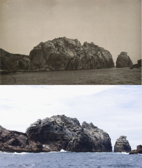 Top: Toru Islet, Western Chain, Snares Islands, viewed from the south, January 1929. Image: Edgar Stead, 2001_59_307_Toru_islet, Canterbury Museum. Below: The same view in November 2013. Image: Colin Miskelly, Te Papa.