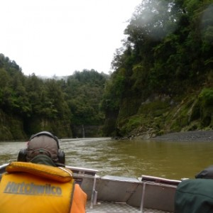 Heading up the Whanganui River in the Department of Conservation's jetboat. Photo: Leon Perrie.