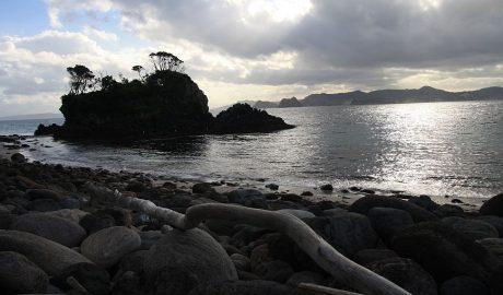 Ohinau Island Coromandel