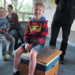 A brave volunteer sits on our bed of nails. © Te Papa