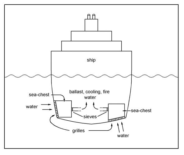 Cross-section through a ship to show sea-chests with intakes on the sides below the water line, or on the bottom. Drawing by WR Webber © WR Webber
