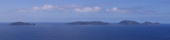 The Chickens (Marotiri) islands viewed from Taranga (Hen Island). From left to right the four main islands visible are Mauitaha, Lady Alice, Whatupuke and Coppermine Islands. Wareware, Muriwhenua and Pupuha Islands lie behind Mauitaha. Image: Colin Miskelly, Te Papa