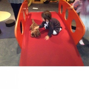 Meeting the dogs; Photographer: Premier Preschool, © Premier Preschool