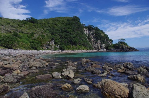 The landing bay on Ohinau Island. Image: Colin Miskelly, Te Papa