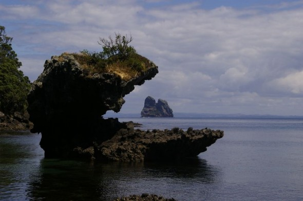 In the dragon's mouth. Sail Rock viewed from the south coast of Taranga. Image: Colin Miskelly, Te Papa