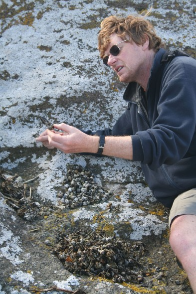 Curator, Alan Tennyson - identifying remains of skua prey. Snares Islands, North-East Island, Skua Point. Image: Antony Kusabs, Te Papa