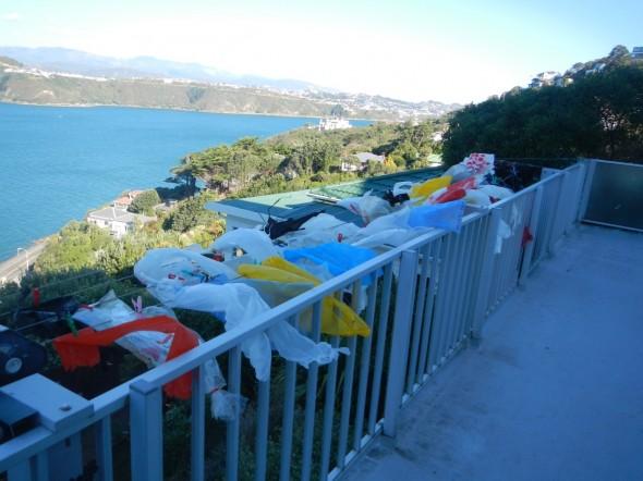 A rubbish day for laundry? Photograph: Te Papa, © Te Papa