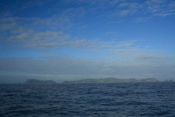 View of the Snares Islands, from sea - 3 nautical miles to the north. Image: Antony Kusabs, Te Papa