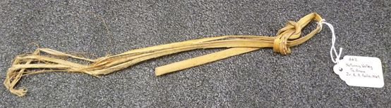 Length of harakeke with bird snare slip knot on end, ME006611. This would probably have been attached to the end of a long stick when in use