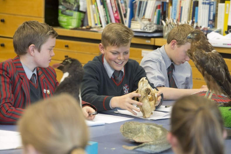 Another skull, this time in one of Sarah Laing's illustration workshops. Photographer: Norm Heke © Te Papa