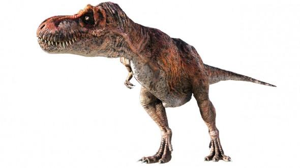lowres_T rex 2