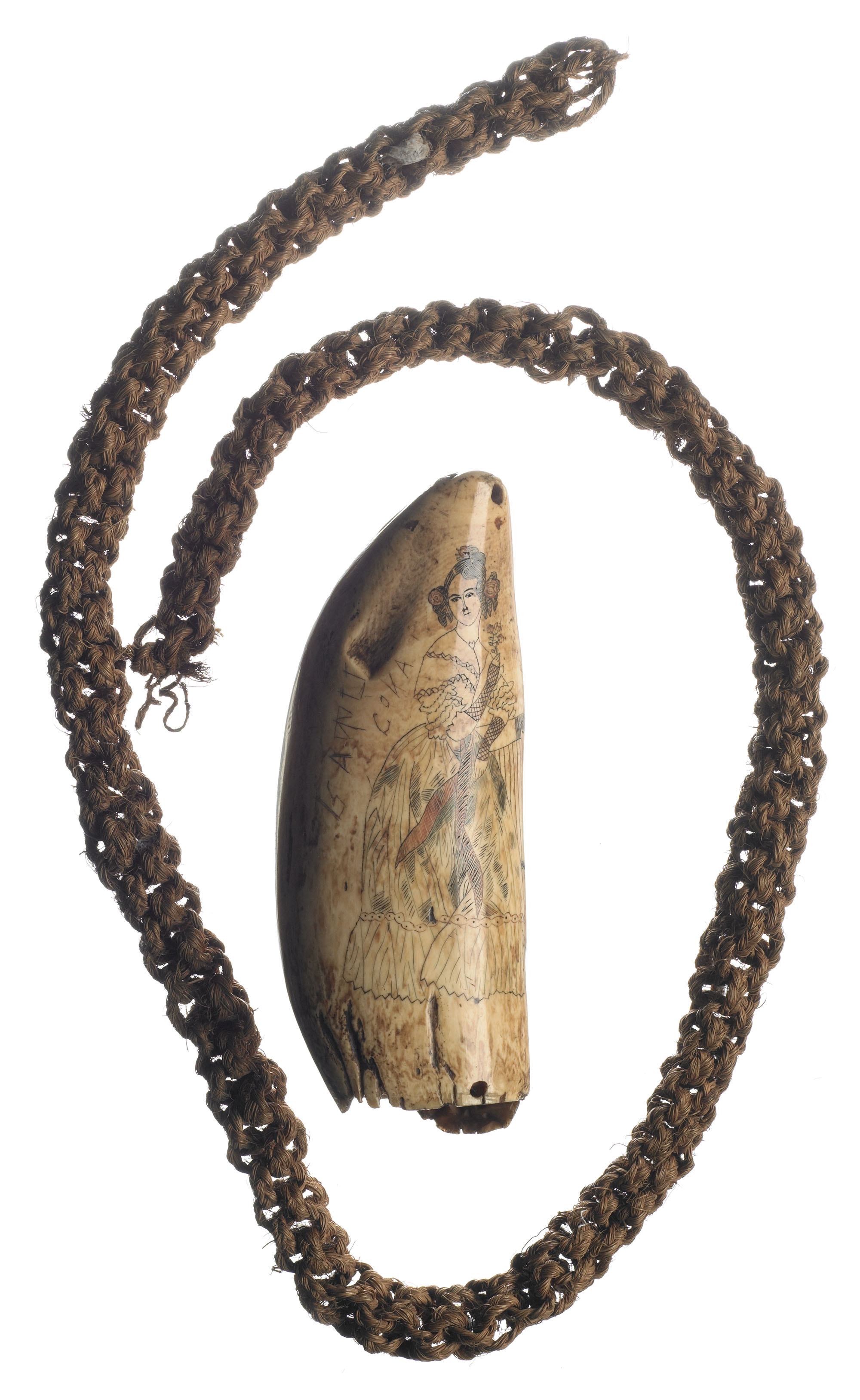 Whale's tooth surrounded by a braided necklace. On the tooth is an engraving of a woman