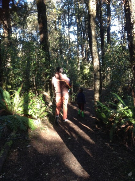 Meandering through beautiful Mangawhero Forest and looking for kererū. Photo by Mel Dash