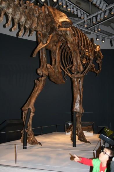 Encountering T.rex, Photographer: Imagine Childcare, © Imagine Childcare
