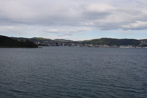 Wellington harbour seen from the Picton ferry, showing the city and port area, an area used by little penguins for foraging from Evan's Bay. Image: Susan Waugh; Copyright, Te Papa.