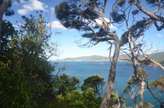 View from the top of Motuara Island. Image Caroline Bost, Copyright Caroline Bost.