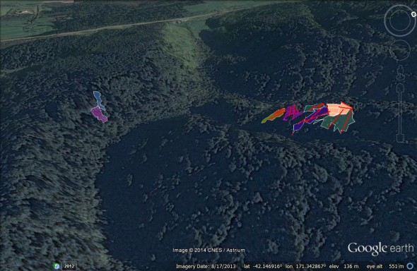 GoogleEarth image of the river valley near Punakaiki, West Coast, where Westland Petrels nests. The two colonies that are studied by Te Papa scientists are shown, Rowe Colony on the left (c. 900 burrows in total) and Study Colony on the right (c. 2000 burrows)