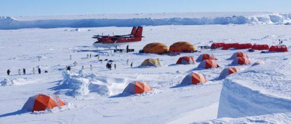 Gould Bay camp, November 2014. Image: Colin Miskelly