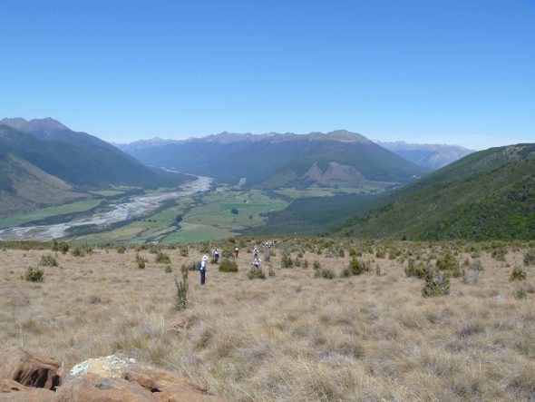 Members of the Wellington Botanical Society on the Red Hills, near Nelson Lakes. Photo: Lara Shepherd.
