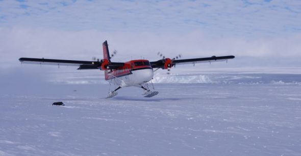 A Twin Otter lands on the ski-way at Gould Bay. Image: Colin Miskelly