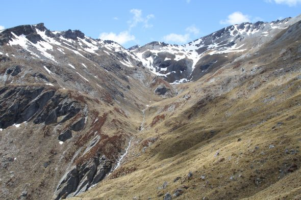 Great views, take two: Staircase Creek in the Hector Mountains. Where are the forget-me-nots here? We are unsuccessful in finding them today. Photo by Ant Kusabs © Te Papa.