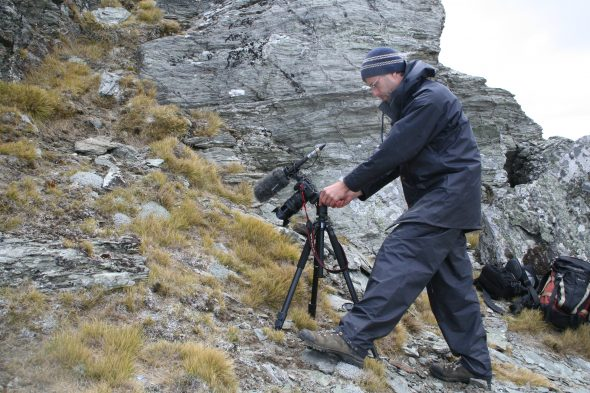 Forget-me-not footage: An important part of collecting is getting images for Collections Online. Ant Kusabs is here filming and photographing the rare Myosotis albosericea in the Dunstan Range. Photo by Heidi Meudt © Te Papa.