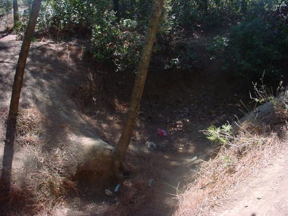 The general area of Lieutenant Colonel Malone's headquarters trench of 8 August 1915 on the seaward slopes of Chunuk Bair. Photo by David Pugsley.