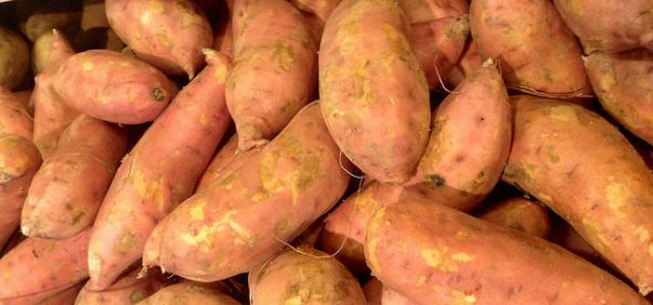 Sweet Potatoes (Kumara) by Mike Mozart, https://www.flickr.com/photos/jeepersmedia/14763854597