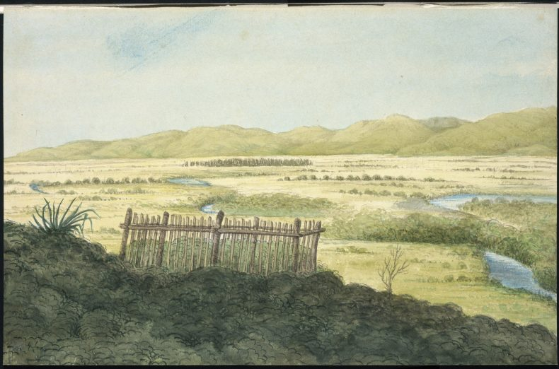 View looking west over the Wairau Plain with the Tuamarina Stream winding across it