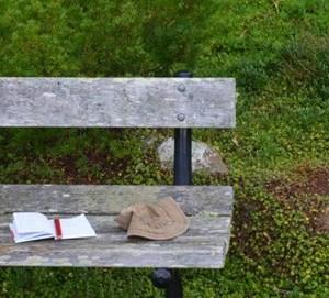 Bench-Otari-Botanic-Garden
