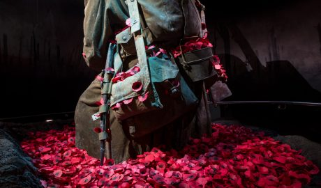 Gallipoli: The scale of our war (c) Te Papa