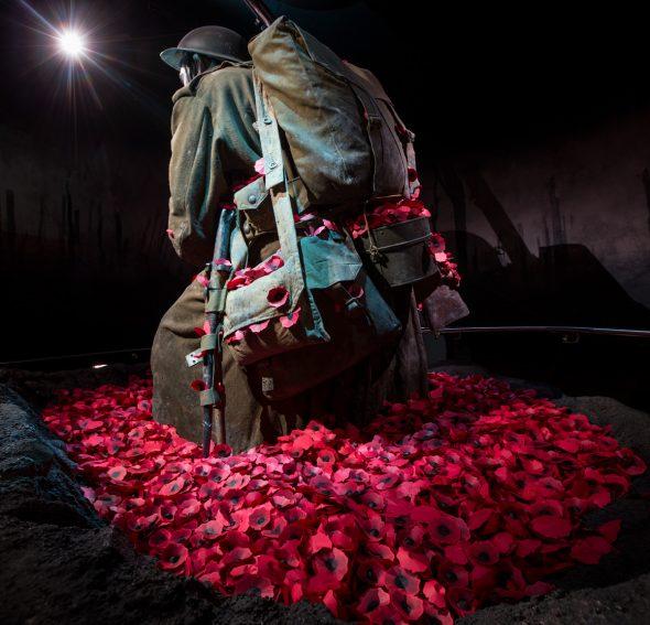 Gallipoli: The scale of our war (c) Te Papa