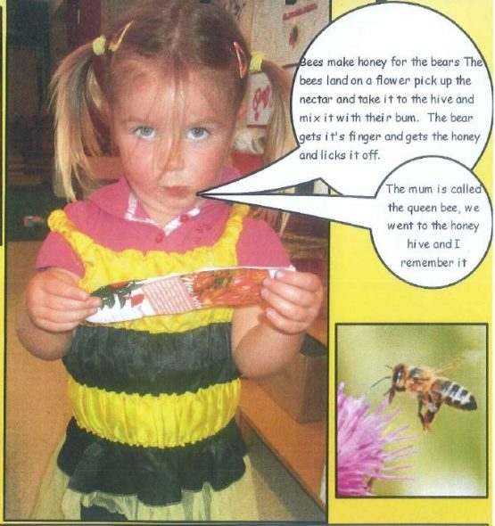 Nerys' theories around bees and bears, Photographer: Raumati South Kindergarten, © Raumati South Kindergarten and Te Papa