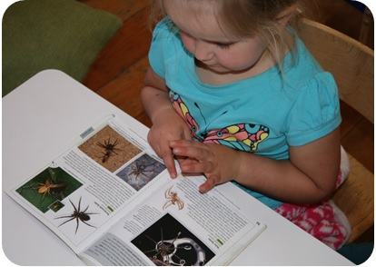 Using reference books, Photographer: Imagine Childcare, © Te Papa