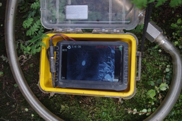 The burrowscope tube and screen, showing a Westland petrel egg inside a burrow. Image: Colin Miskelly, Te Papa