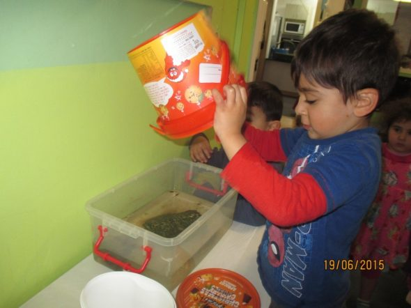 Hari and his peg bucket, Photographer: Kiwi Kids ECE, © Te Papa
