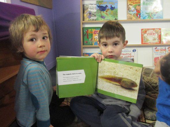 Reading up on tadpoles; Photographer: Kiwi Kids ECE, © Te Papa