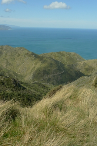 Looking south-east-ish from a high point near Te Kopahou. Getting around this dissected landscape involves a lot of up and down. Fortunately, we had 4WDs (and permission to use the tracks). Photo Leon Perrie. © Te Papa.