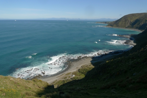 Between Sinclair Head and Tongue Point, with the South Island in the distance. Photo taken mid-morning, with the sun yet to illuminate the south-facing hillsides. Photo Leon Perrie. © Te Papa.
