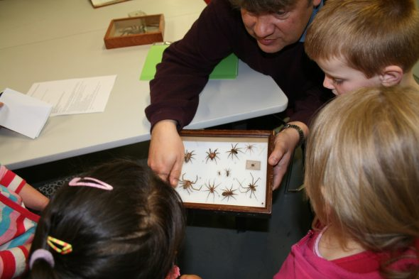 Phil sharing about New Zealand spiders, Photographer: Imagine Childcare, © Te Papa