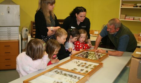 Ricardo sharing about beetles, Photographer: Imagine Childcare, © Te Papa
