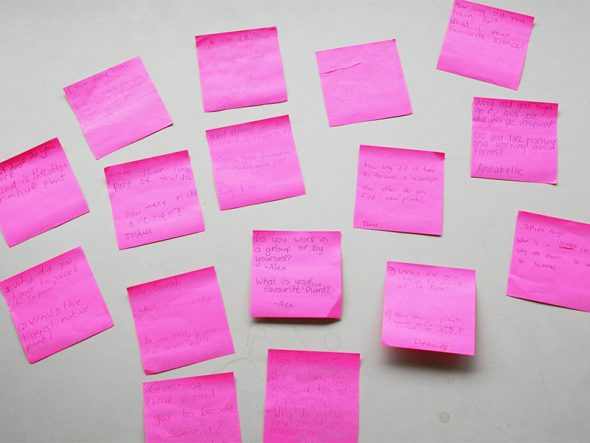 Burning questions for a botanist: Handwritten questions submitted by Room 1 year 7 & 8 students from South Wellington Intermediate School, on pink sticky notes! Photo by Heidi Meudt © Te Papa.