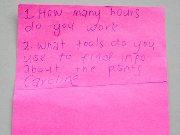 """1. How many hours do you work? 2. What tools do you use to find info about the plants?"" --Caroline. Photo by Heidi Meudt © Te Papa."
